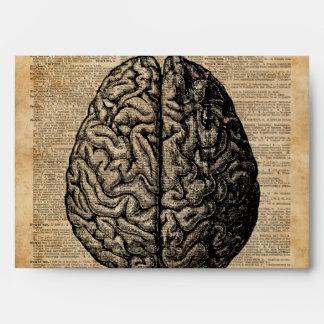 Human Brain Vintage Illustration Dictionary Art Envelope