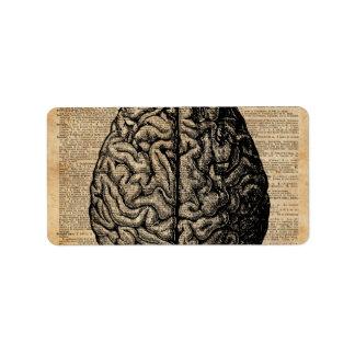 Human Brain Vintage Illustration Dictionary Art Label