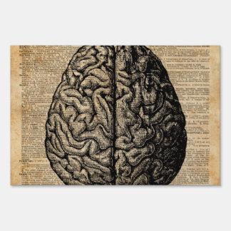Human Brain Vintage Illustration Dictionary Art Sign