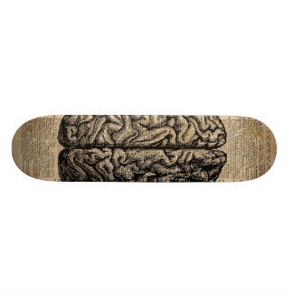 Human Brain Vintage Illustration Dictionary Art Skateboard Deck
