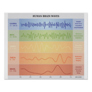 Human Brain Waves Diagram - Rainbow Colors Poster