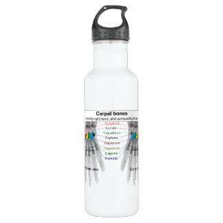 Human Carpus Bone Structure Diagram Stainless Steel Water Bottle