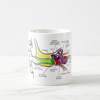 Human Ear Diagram with Cochlear Frequency Mapping Coffee Mug