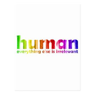Human - Everything else is irrelevant Postcard