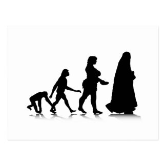 Human Evolution_11 Postcard