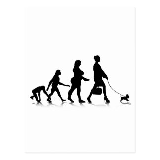 Human Evolution_9 Postcard