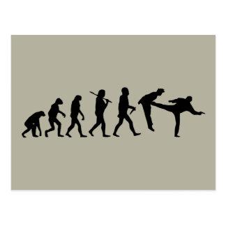 Human Evolution Postcard