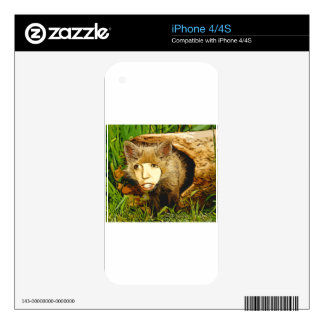 human face fox decal for iPhone 4