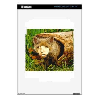 human face fox iPad 3 skins