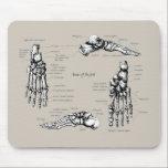 "Human foot mouse pad<br><div class=""desc"">Bones of the human foot</div>"