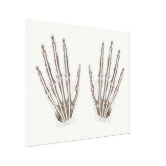 Human hand anatomy stretched canvas print