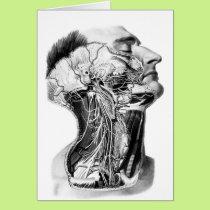 Human Head Anatomy Design Card
