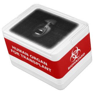 Human Head in Organ Transplant Cooler