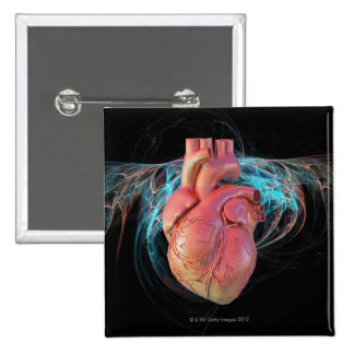 Human heart, computer artwork. button