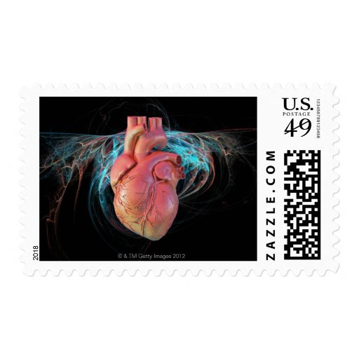 Human heart, computer artwork. postage stamp