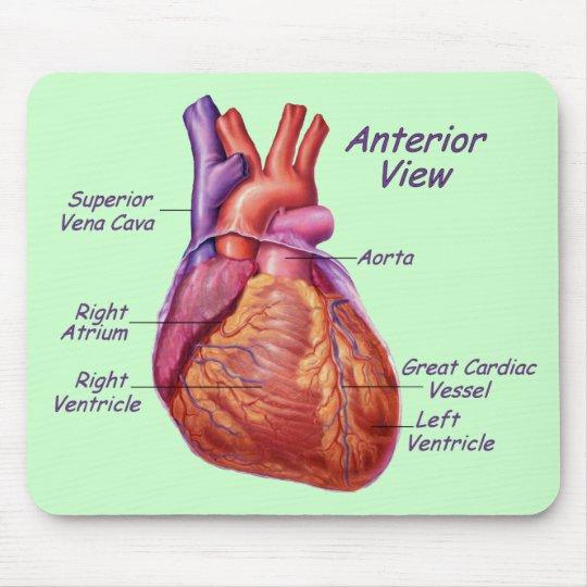Human Heart Labeled Mousepad