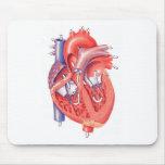 Human Heart Mousepads