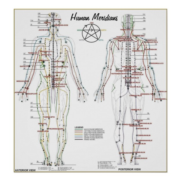 Human Meridians & Pressure Point Chart Poster