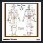 """Human Meridians &amp; Pressure Point Chart Wall Decal<br><div class=""""desc"""">Used in traditional Chinese health care and martial arts.</div>"""