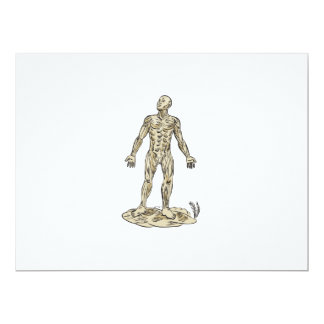 Human Muscle Anatomy Etching 6.5x8.75 Paper Invitation Card