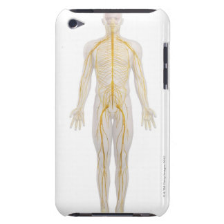 Human Nervous System 2 Barely There iPod Case