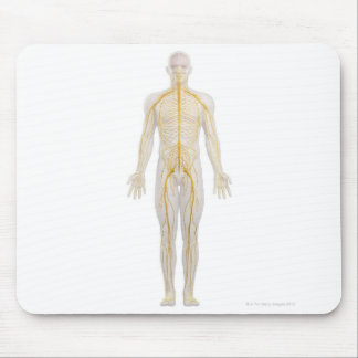 Human Nervous System 2 Mouse Pad