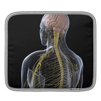 Human Nervous System Sleeves For iPads