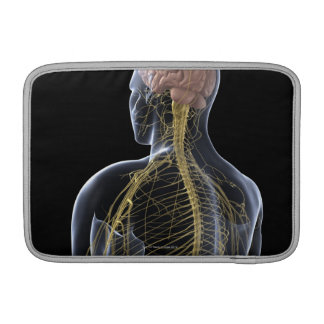 Human Nervous System MacBook Air Sleeve