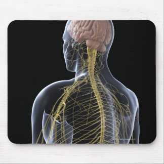 Human Nervous System Mouse Pad
