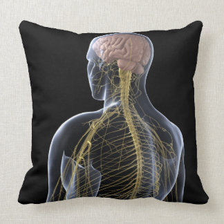 Human Nervous System Pillows