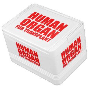 HUMAN ORGAN FOR TRANSPLANT DRINK COOLER