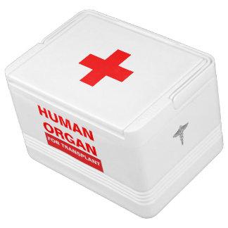Human Organ Igloo 12 Can Cooler