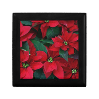 Human Poinsettia Collection Jewelry Box
