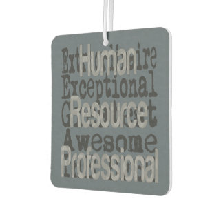 Human Resource Professional Extraordinaire Car Air Freshener