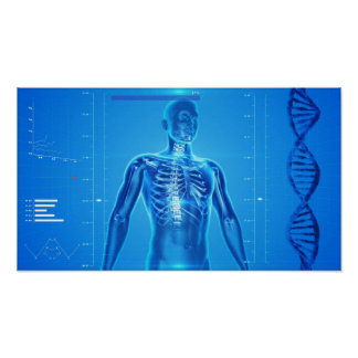 human-skeleton-163715 HUMAN SKELETON FANTASY SCIEN Poster