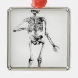 Human Skeleton Christmas Tree Ornaments