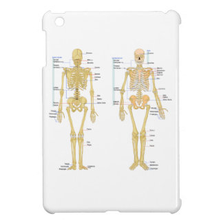 Human Skeleton labeled anatomy chart Cover For The iPad Mini