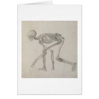 Human Skeleton: Lateral view in Crouching Posture, Card