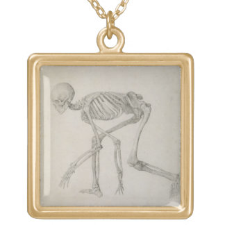 Human Skeleton: Lateral view in Crouching Posture, Gold Plated Necklace
