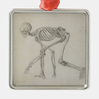 Human Skeleton: Lateral view in Crouching Posture, Metal Ornament