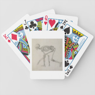 Human Skeleton Lateral view in Crouching Posture Playing Cards
