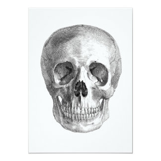 Human skull anatomy sketch drawing card