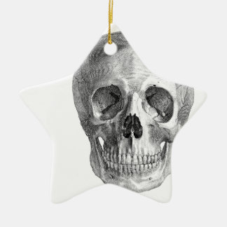Human skull anatomy sketch drawing ceramic ornament