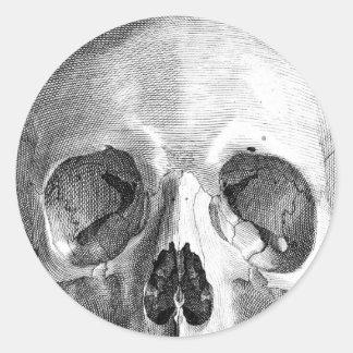 Human skull anatomy sketch drawing classic round sticker