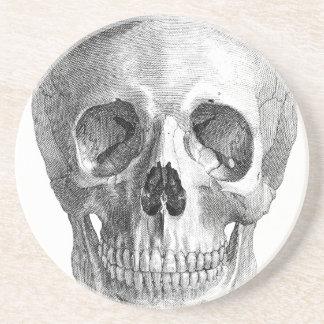 Human skull anatomy sketch drawing beverage coasters
