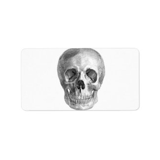 Human skull anatomy sketch drawing personalized address labels
