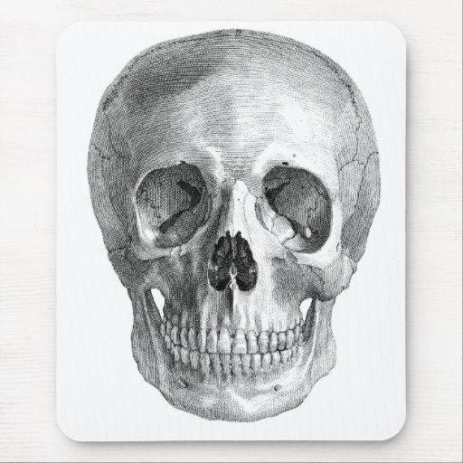 Human skull anatomy sketch drawing mouse pad