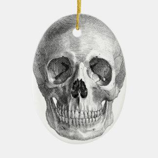 Human skull anatomy sketch drawing ornament