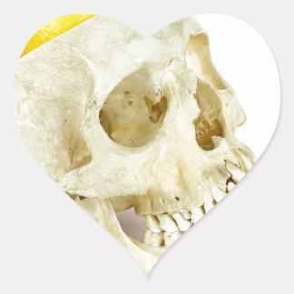 Human skull as fruit scale heart sticker