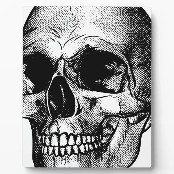 Human Skull Drawing Plaque